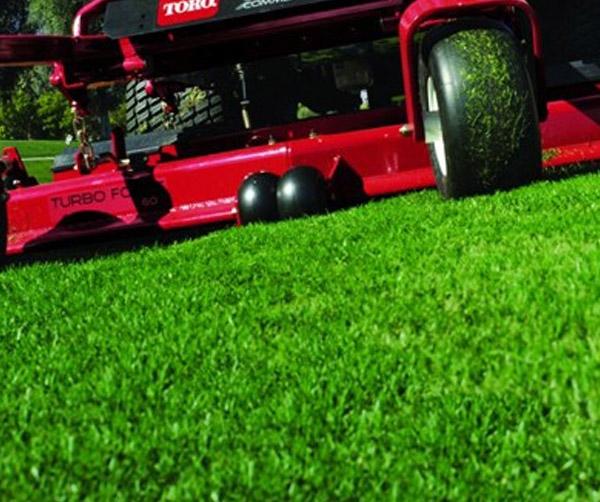 lawn-lg